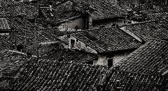 dach und dächer