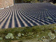 °°° Dachansichten - sind auch ganz interessant °°°