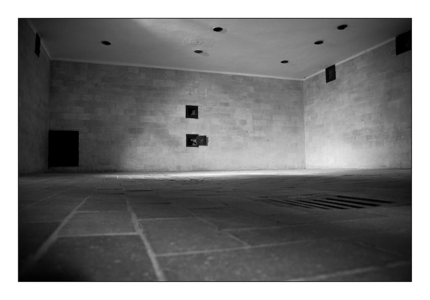 Dachau V
