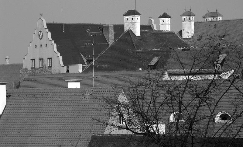Dachauer Dachlandschaft 2