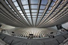Dachkonstruktion (2)