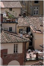 Dachlandschaften[1] Lucca