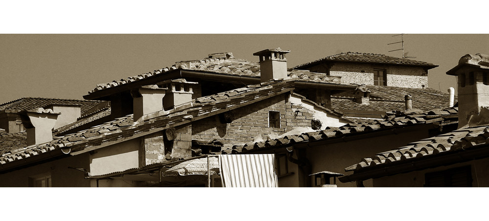Dächer in Siena