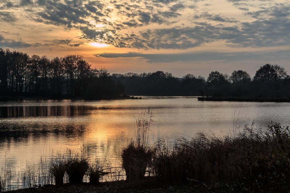 Dämmerung am Einfelder See