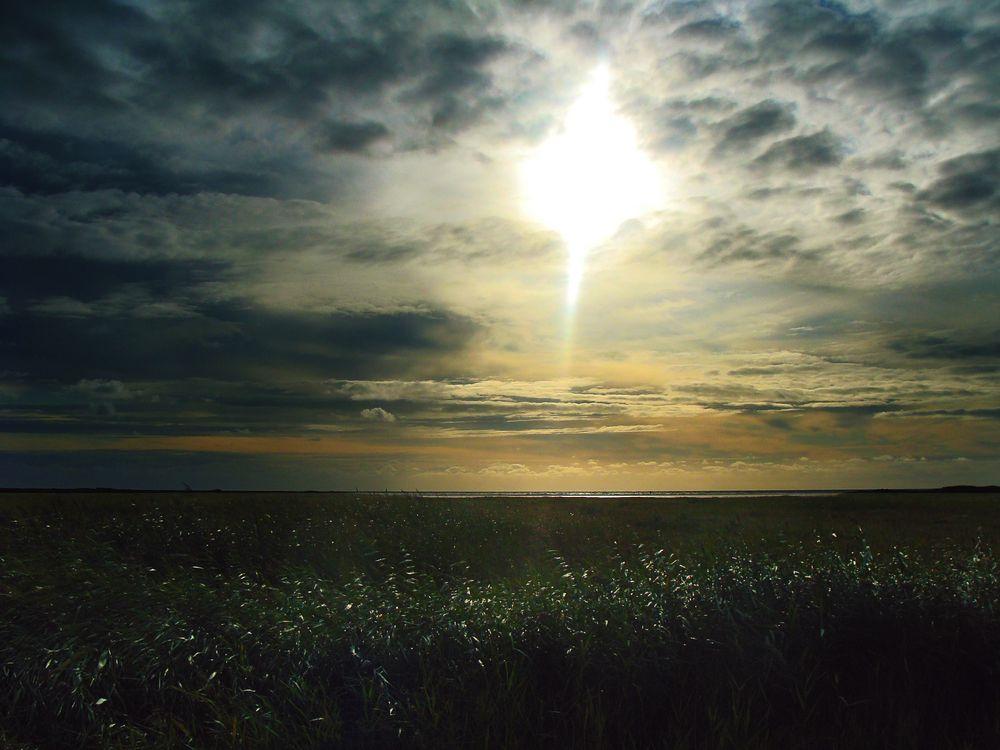 Dänemark 2011 003