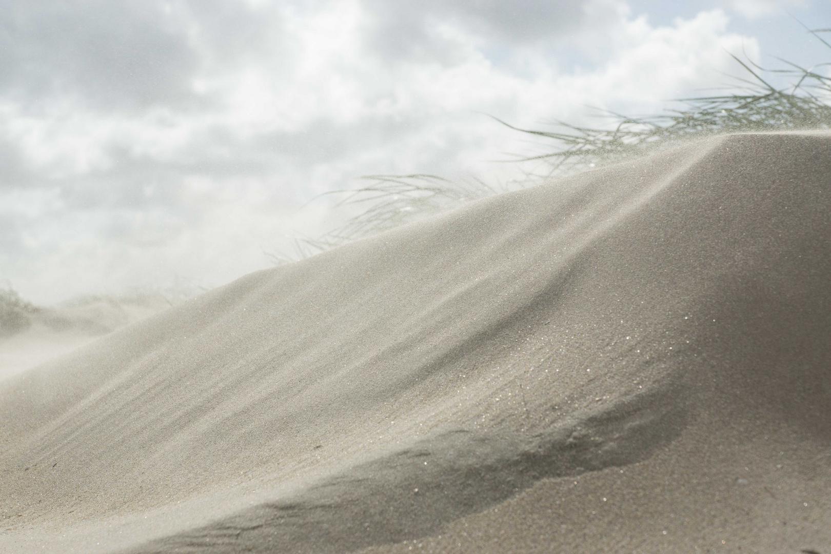 Dänemark 2015, Insel Rømø. Den Sand hat man nachher überall.