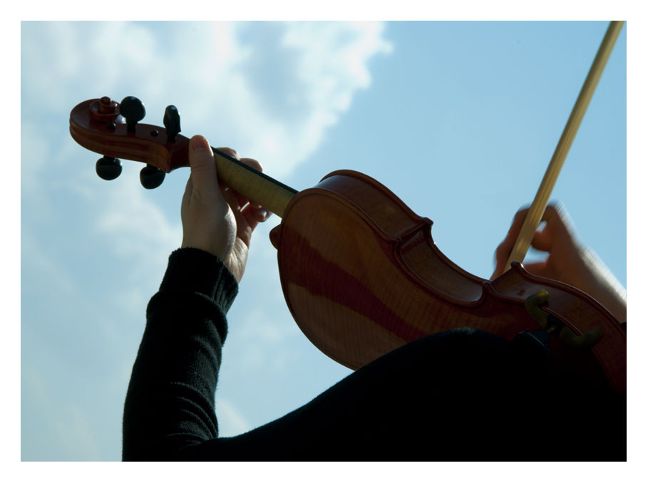 ...dal legno la musica