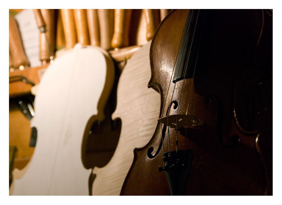...dal legno la musica 6