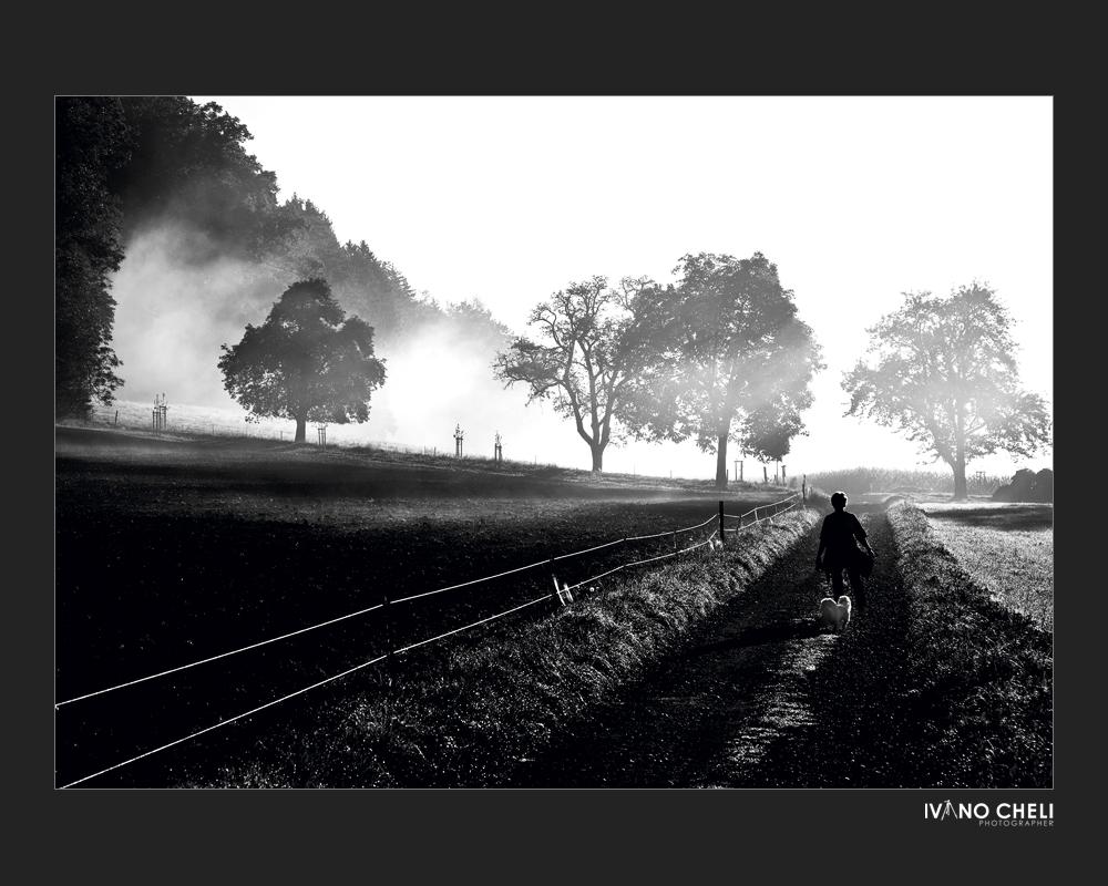Dalla nebbia vengo, nella nebbia vado