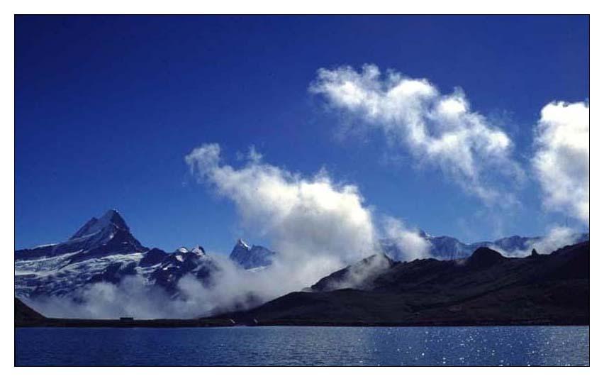 Damals: Grindelwald