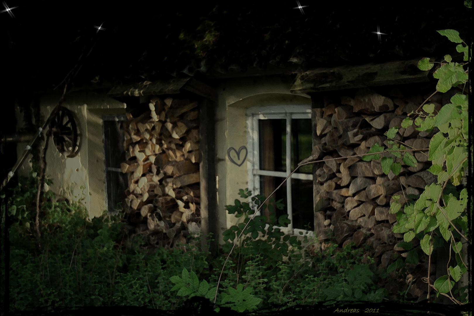 Damals im dunklen Wald