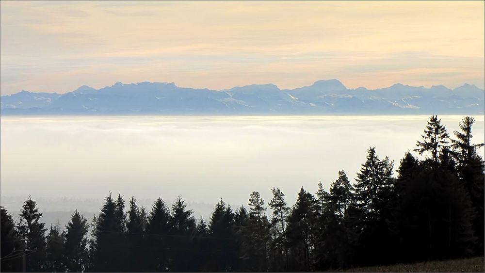 damals im Nebel oben
