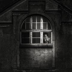 Dame am Fenster