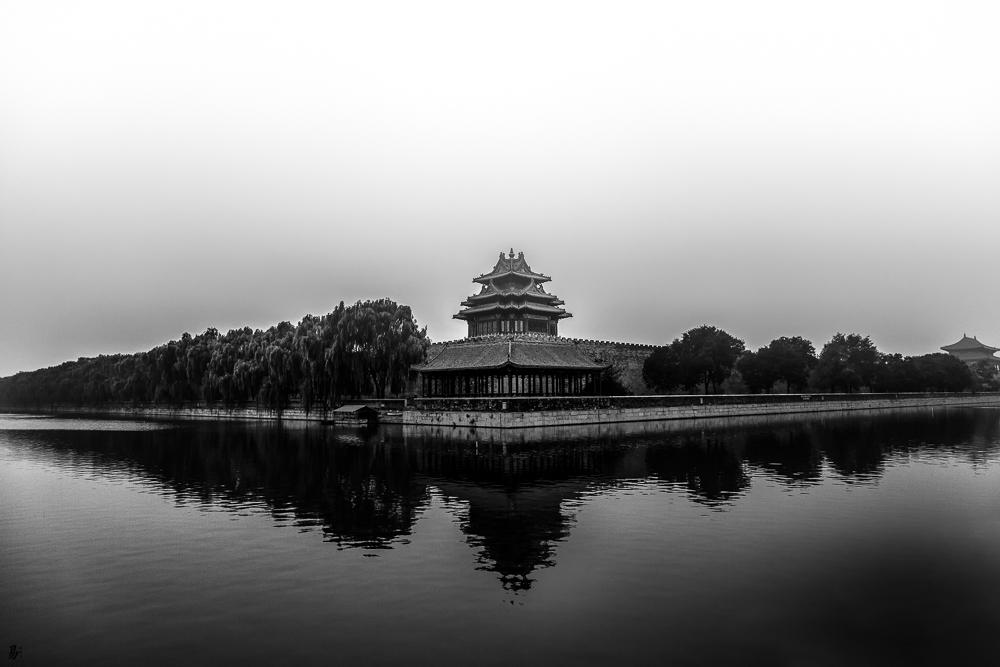 damp forbidden city