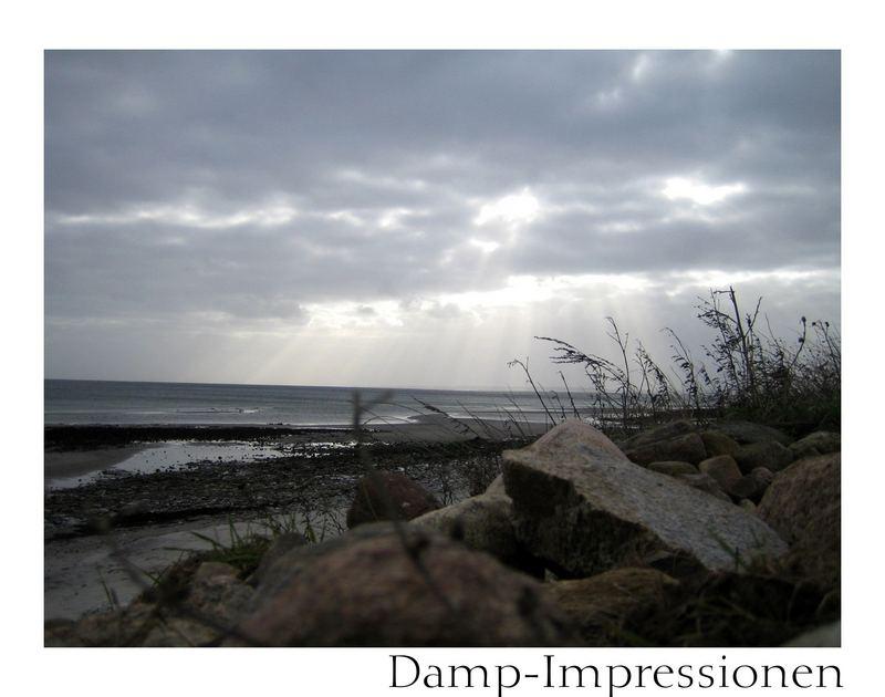 Damp-Impression