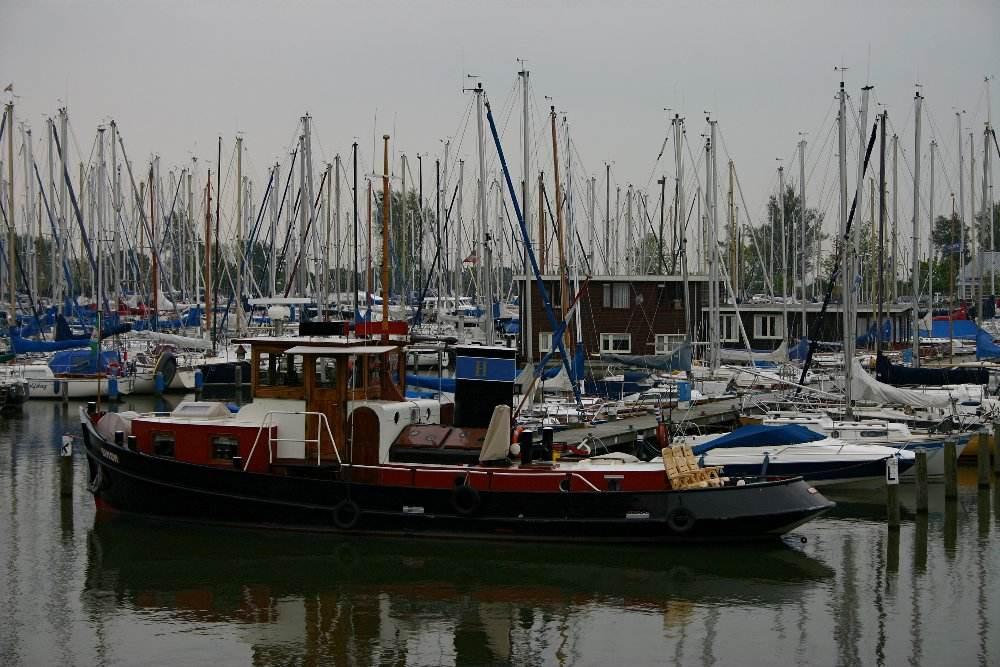 Dampfschlepper im Hafen von Hoorn/ NL