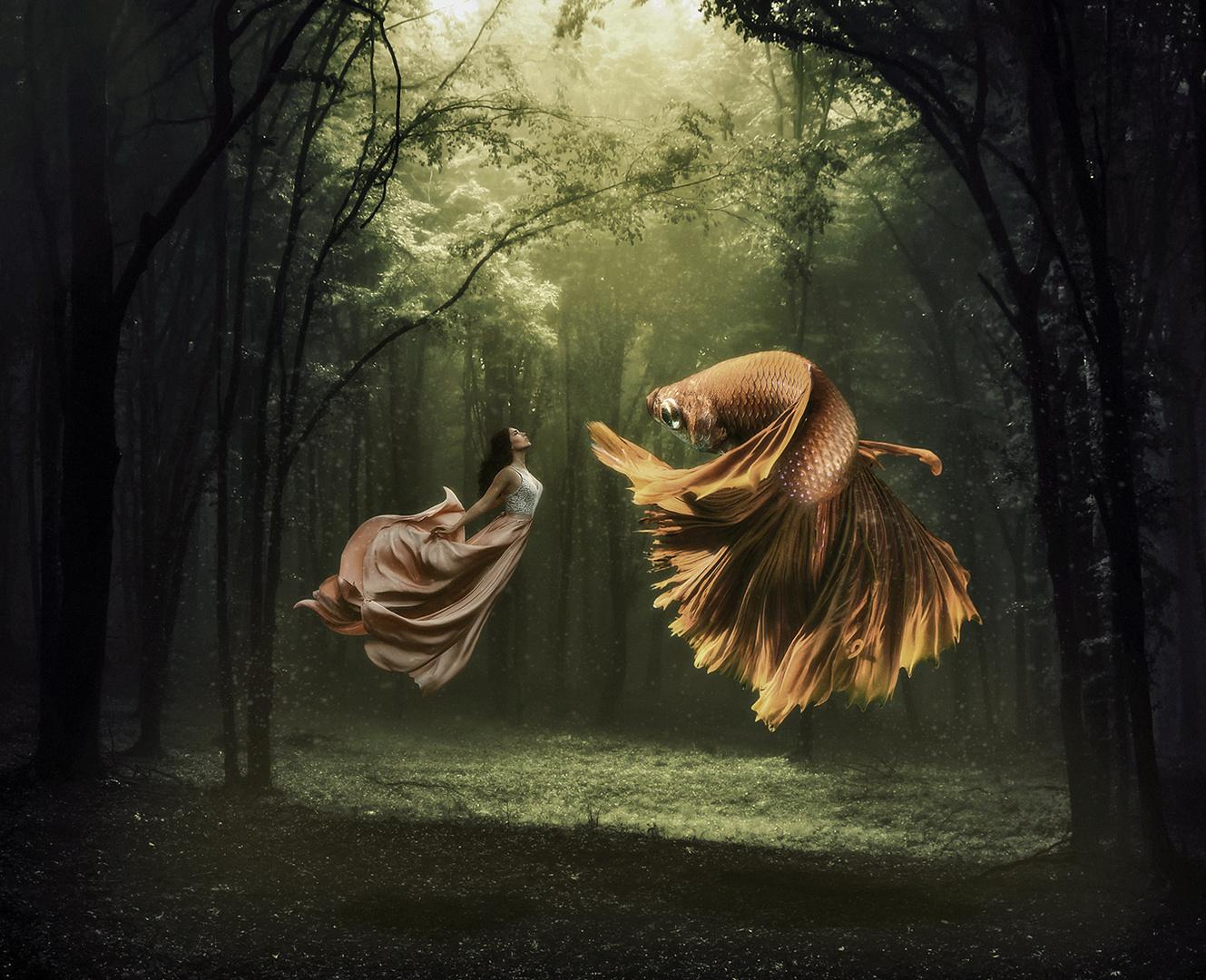 Dance of Beauty