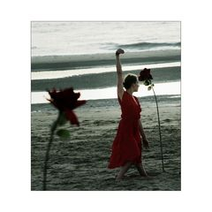 dance with a rose