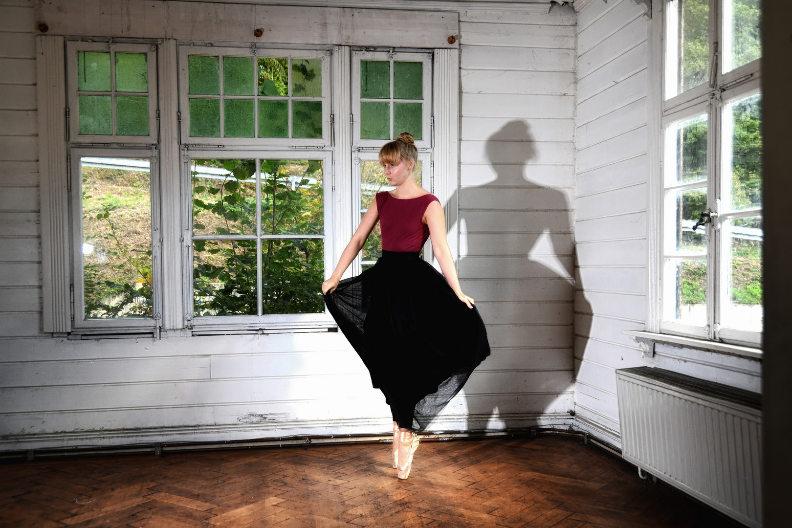 dance withe the shadow