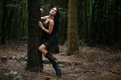 Dancing in the wood