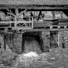 Dane Boones mill