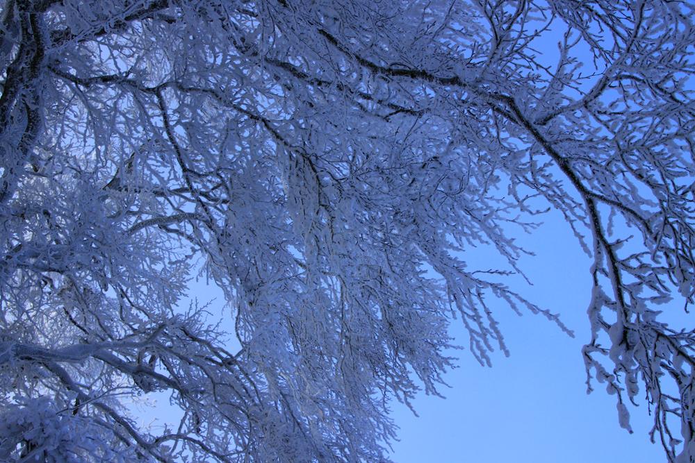 DANKE - Winterspaziergang Dach aus Schnee -