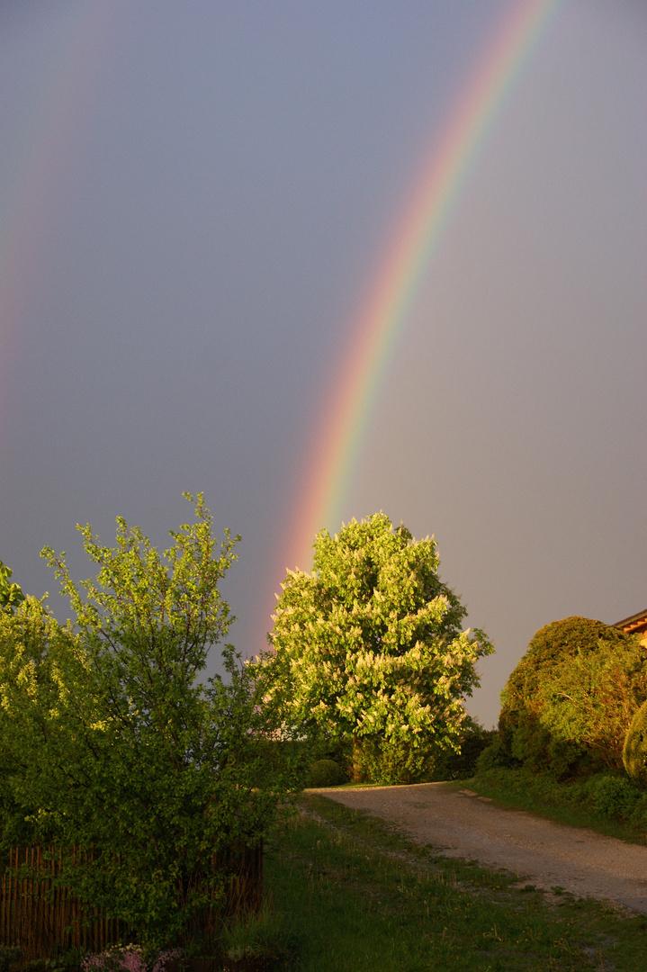 Dann Kam Ein Regenbogen
