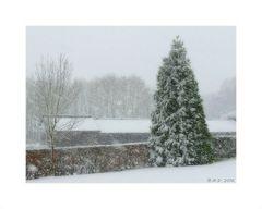 Dann kam er doch noch...der erste Schnee....
