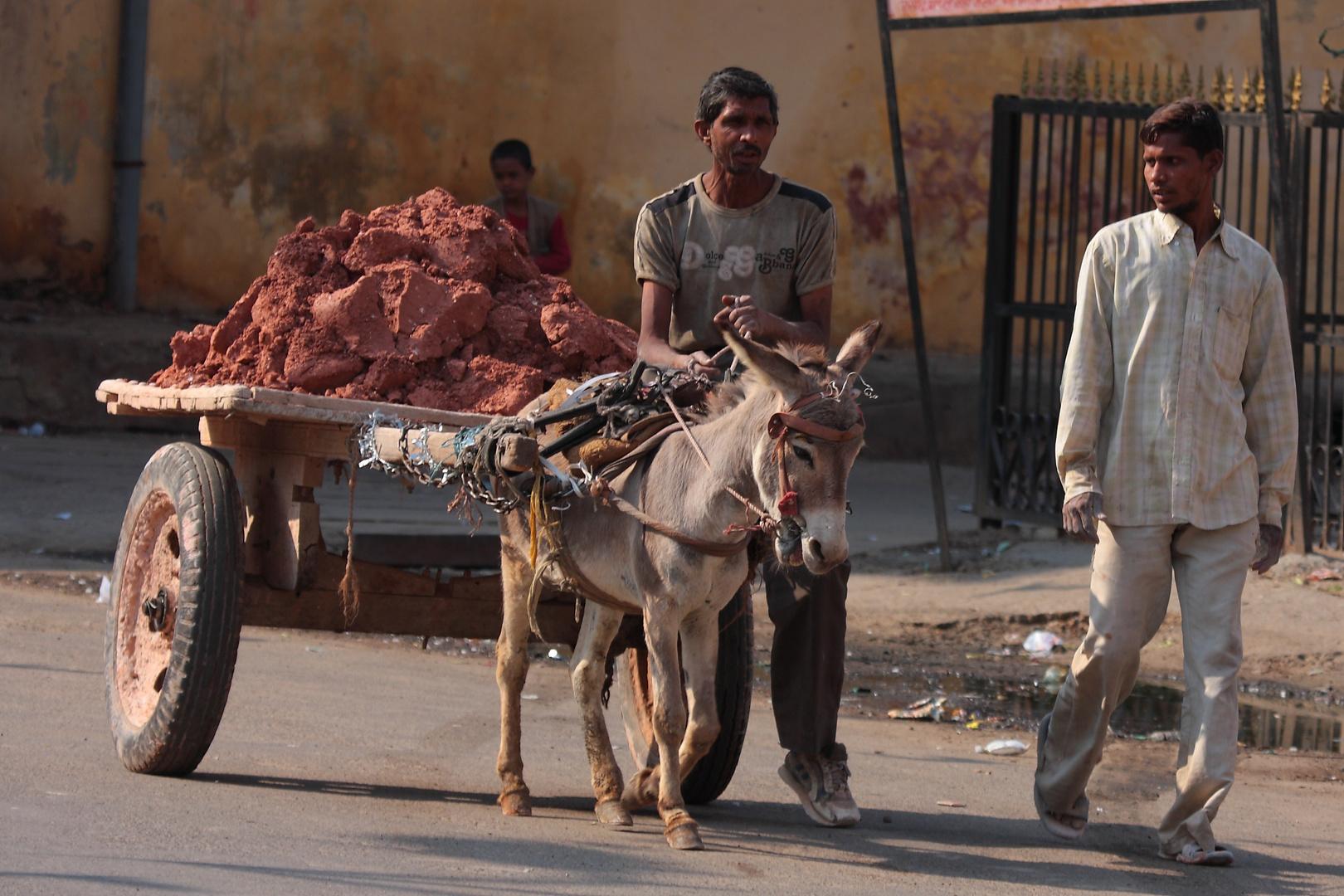 Dans la ville de Jaipur, Rajasthan.
