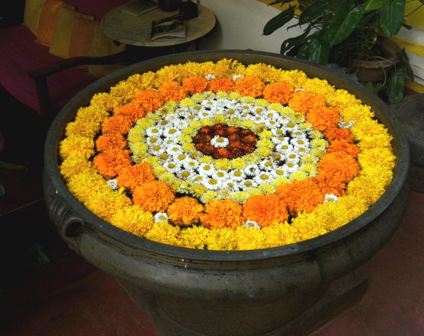 Dans le hall du Colonial Héritage à Pondicherry