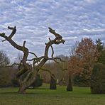 Dans le parc de Madingley Hall  --  Cambridge  --  In dem Park von Madingley Hall