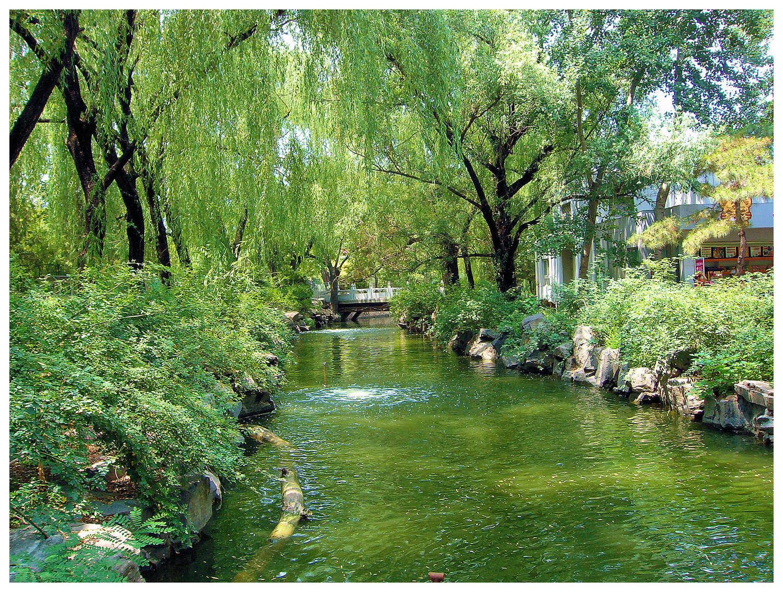 Dans le parc du zoo, Beijing