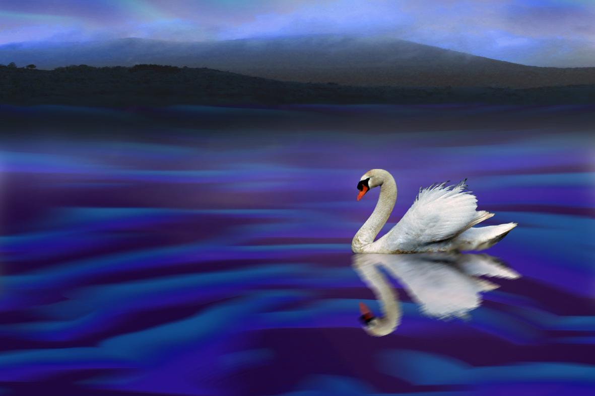 Dans le reflet du lac...
