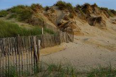 """"""" Dans les dunes."""""""