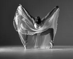 danseuse - auf spitzen no2