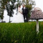 Dario Gebel Hochzeitsfotografie Kump