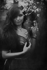~ dark beauty ~