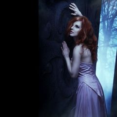 [ dark forest ]