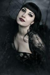 ~ dark rose ~