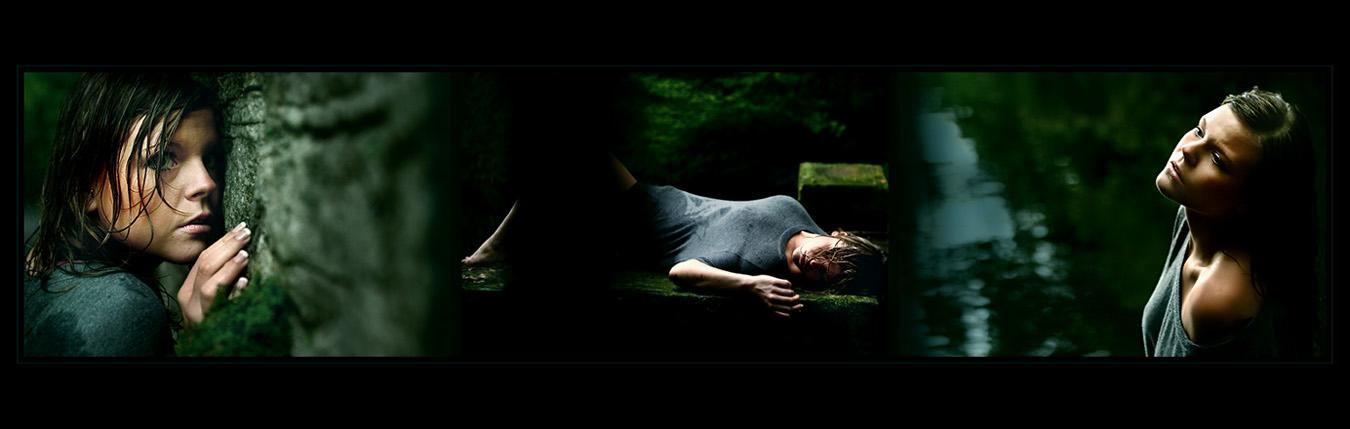 [dark wooden stories]