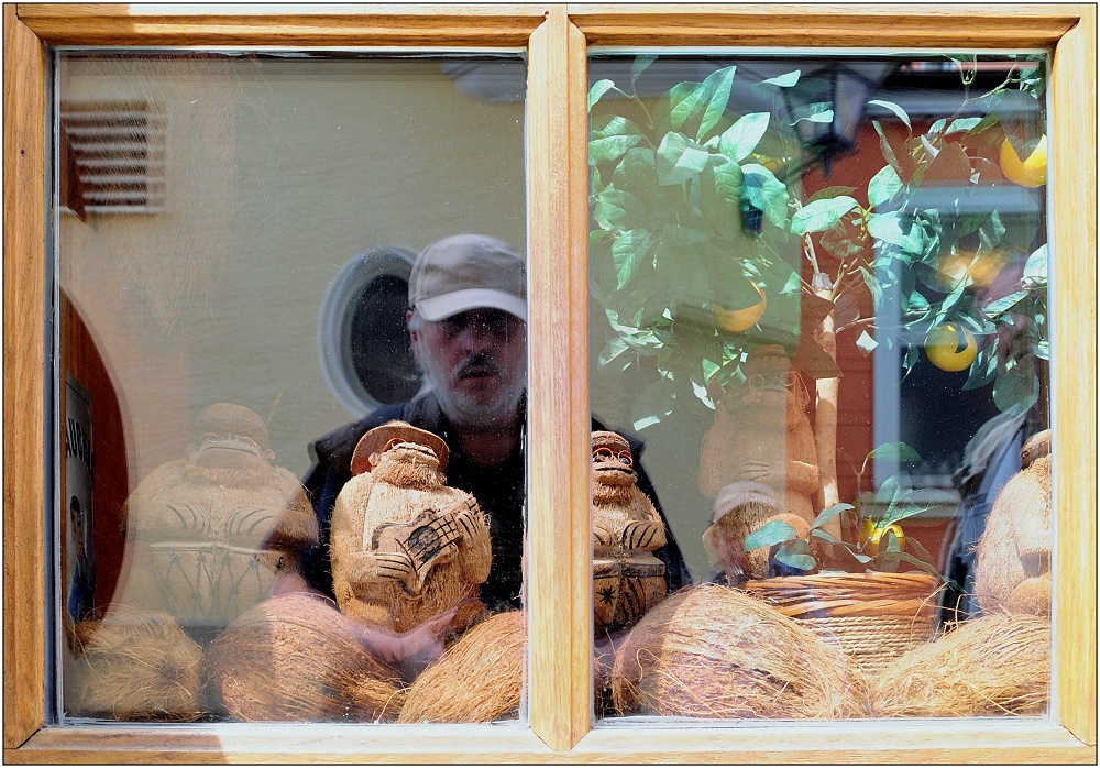 ... das Affenfenster ...