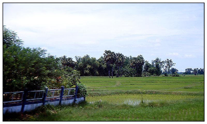 Das agraische Isaan-Plateau - Wiege der Kultur