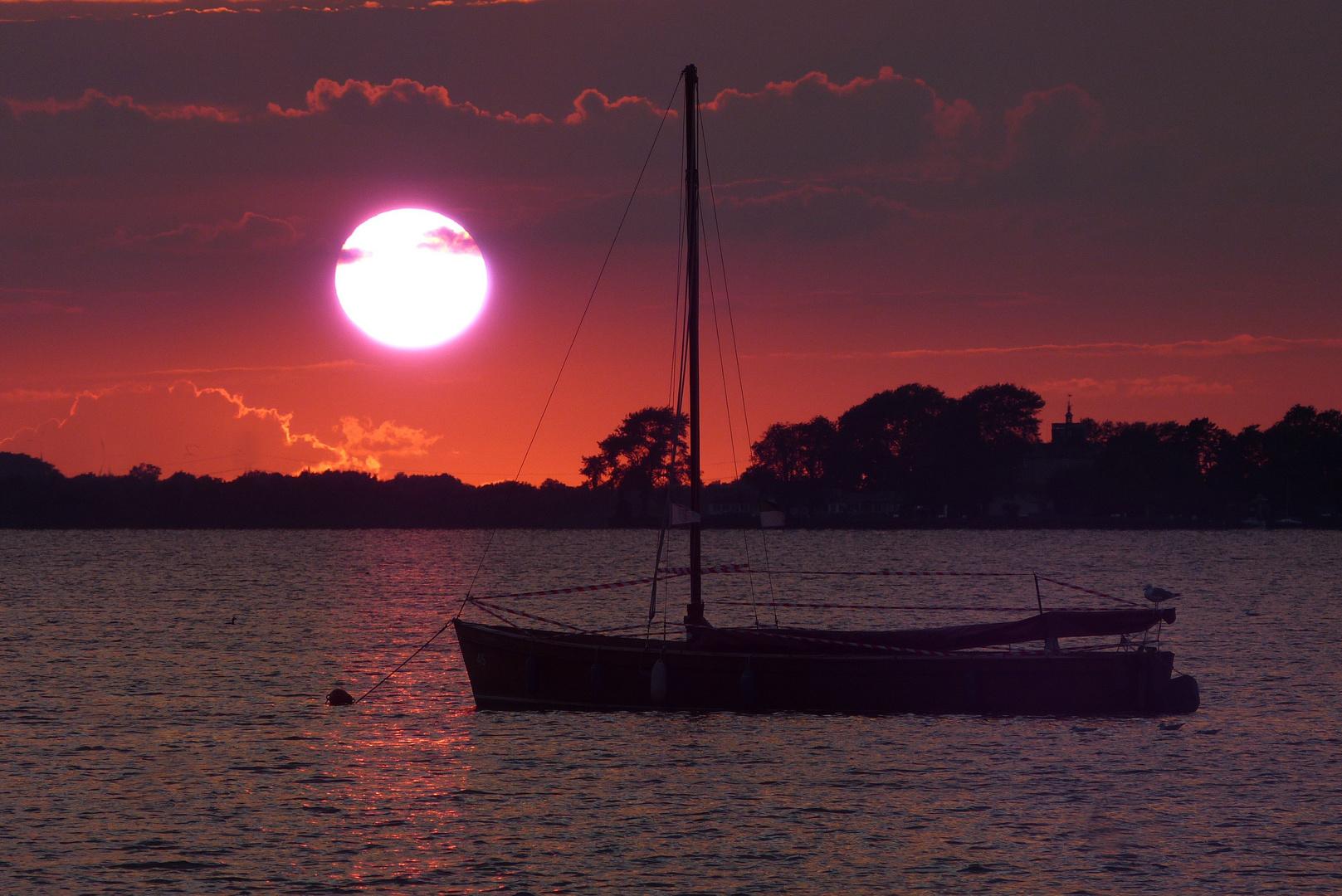 Das Alte Boot und das Meer (Steinhude)