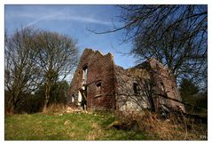 Das alte Haus im Wald