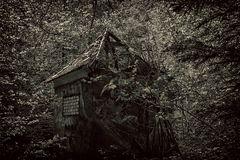 Das alte Umspannwerk im Wald