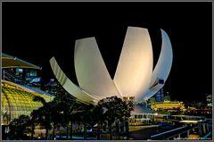 Das ArtScience Museum in Singapore