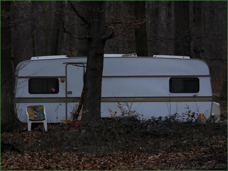 Das Baum Camp Teil3