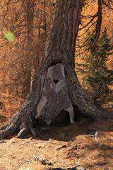 Das Baumklo