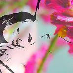 Das Blumenbett von Marita