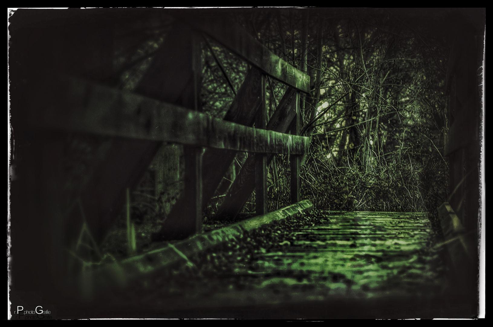 Das Brücklein im Walde